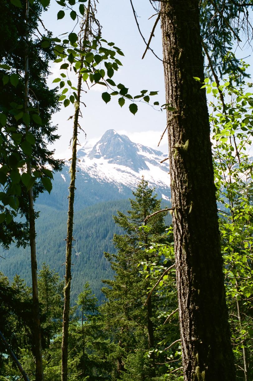 Cascade Peak through the trees on trail_hike_vertical_web.jpg