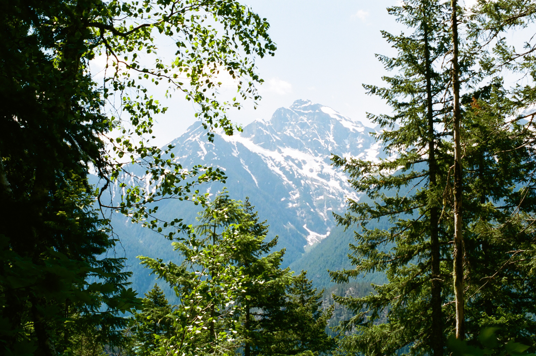 Cascades through the trees on hike_web.jpg