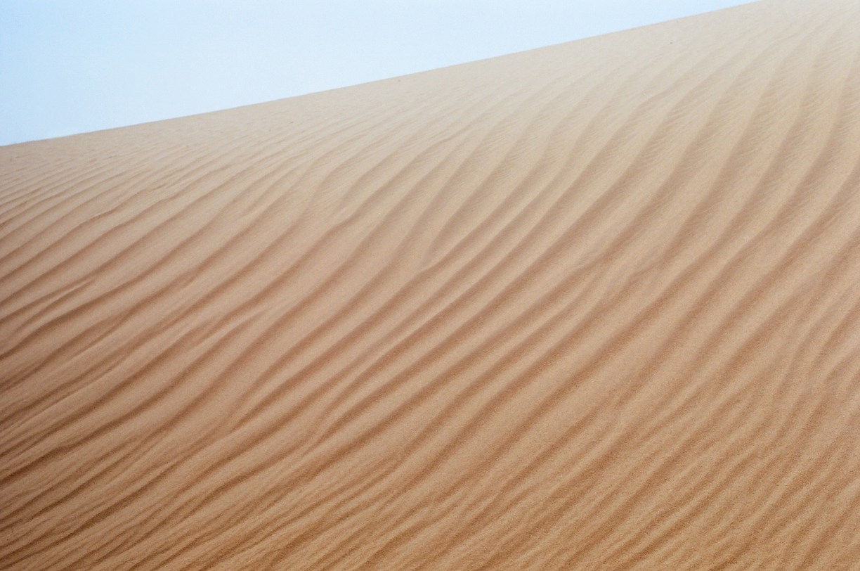 Sand Waves and Lines in Dune_Sahara_web.jpg