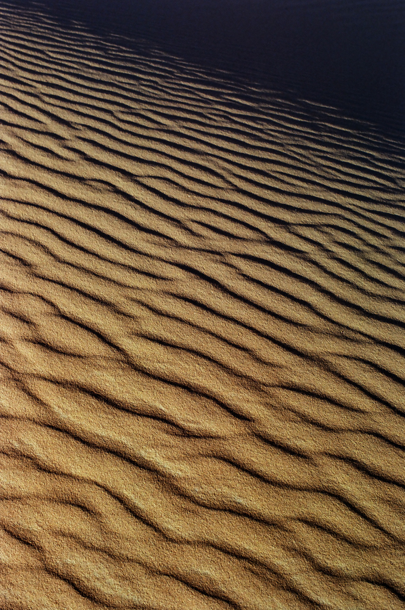 Texture of Sand Waves and Curves in Dune_Sahara_web.jpg