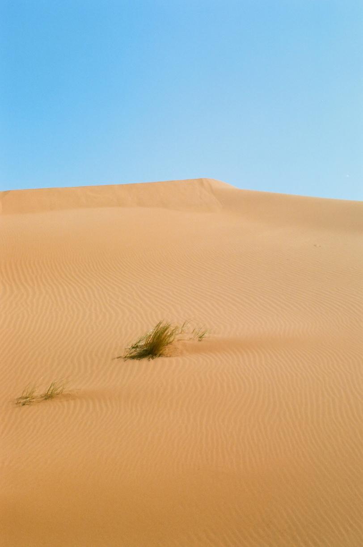 Sand Dune Sahara 001_web.jpg