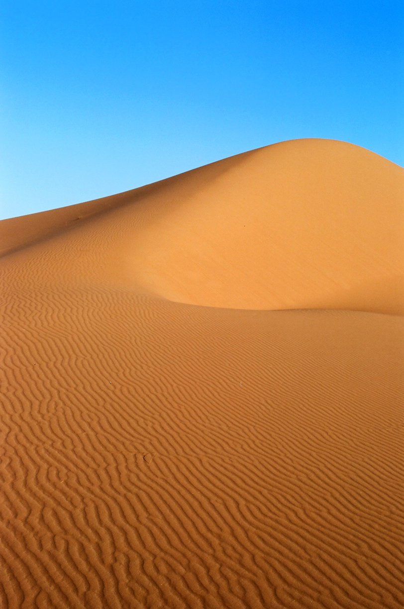 Dune Hump and Curve_Vertical_Sahara_web.jpg