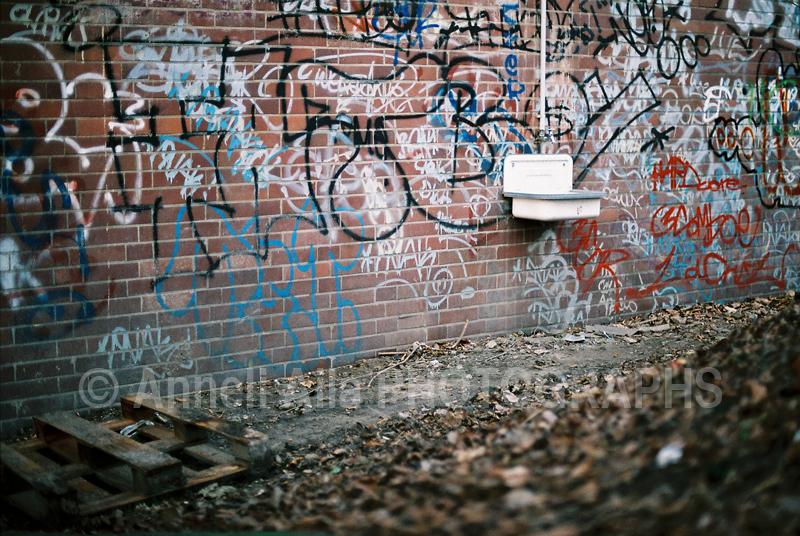 AnneliAila © Aila vieW in JAN 08 021.jpg