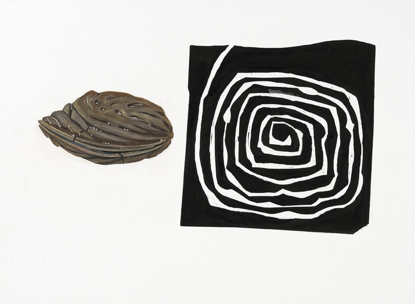 Old Seed/Spiral
