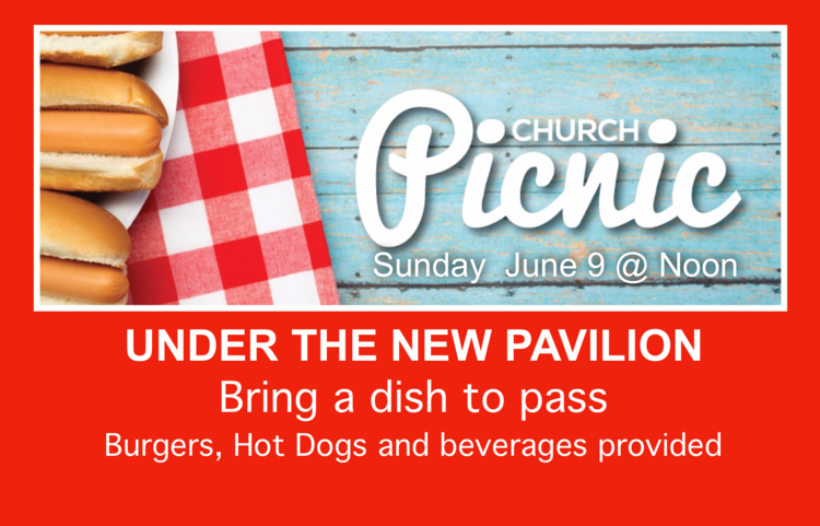 Church Wide Picnic — Pathfinder Church
