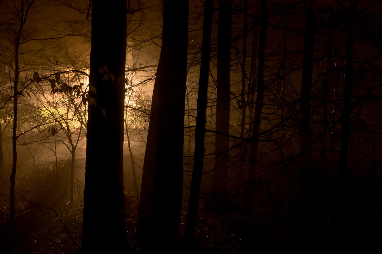 Go To The Light  via  Photopin   (cc)