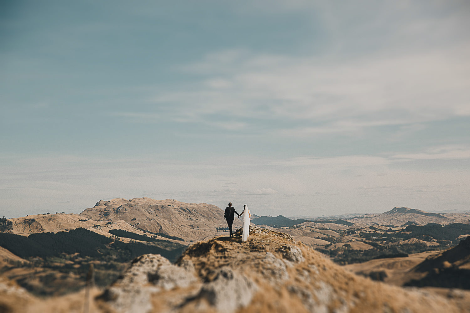 Hawkes Bay Wedding Photographer | Summer wedding photographs at Te Mata Peak, Hastings