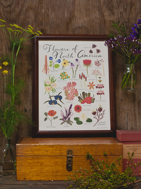 flowers of north america print by  small adventure