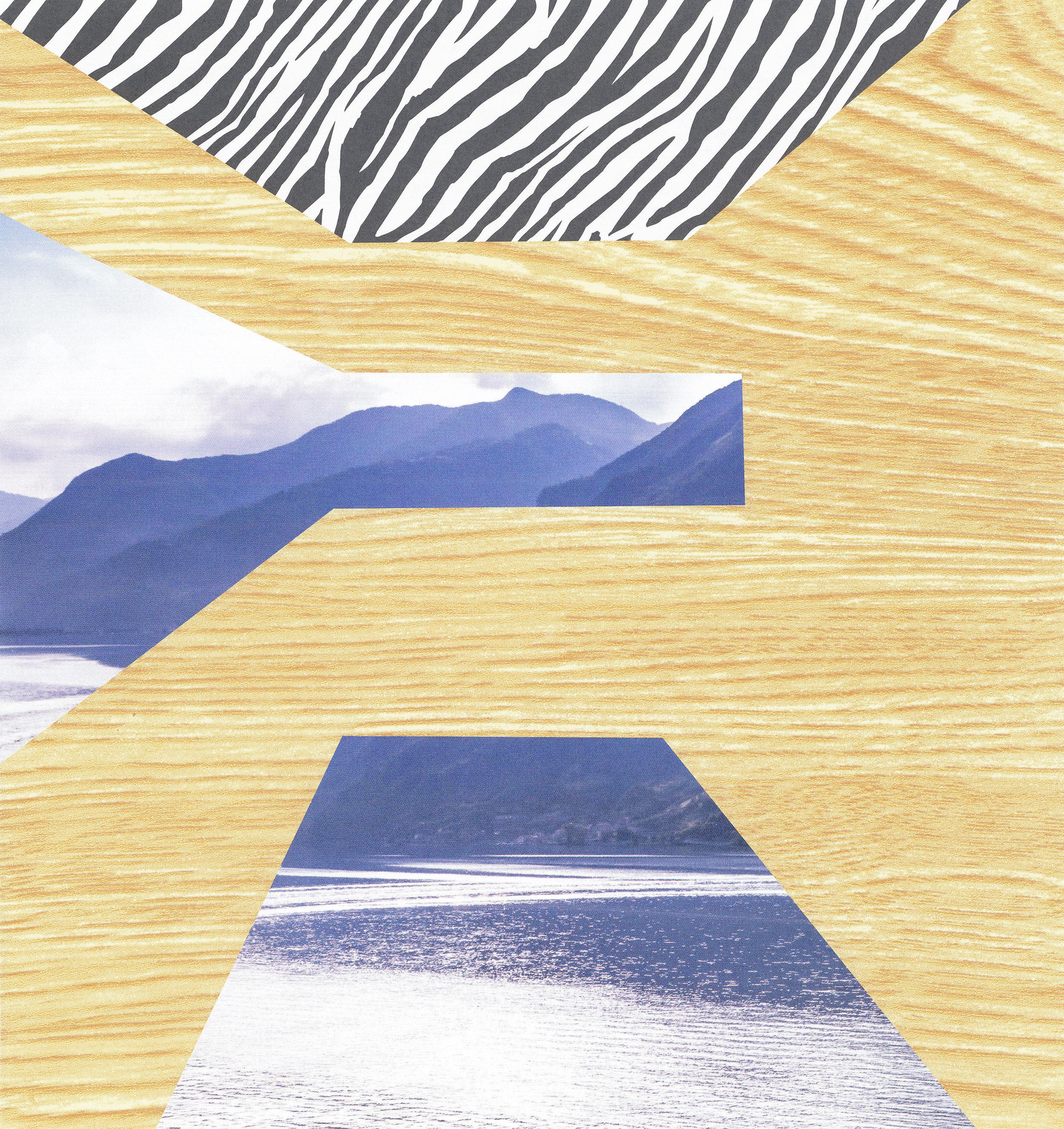 Zebra Skylight
