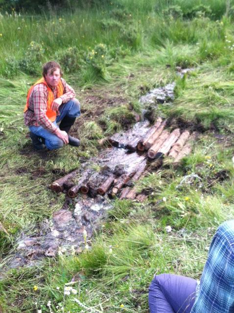 Log step dam 1.jpg