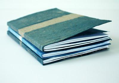 indigo_books_2.jpg