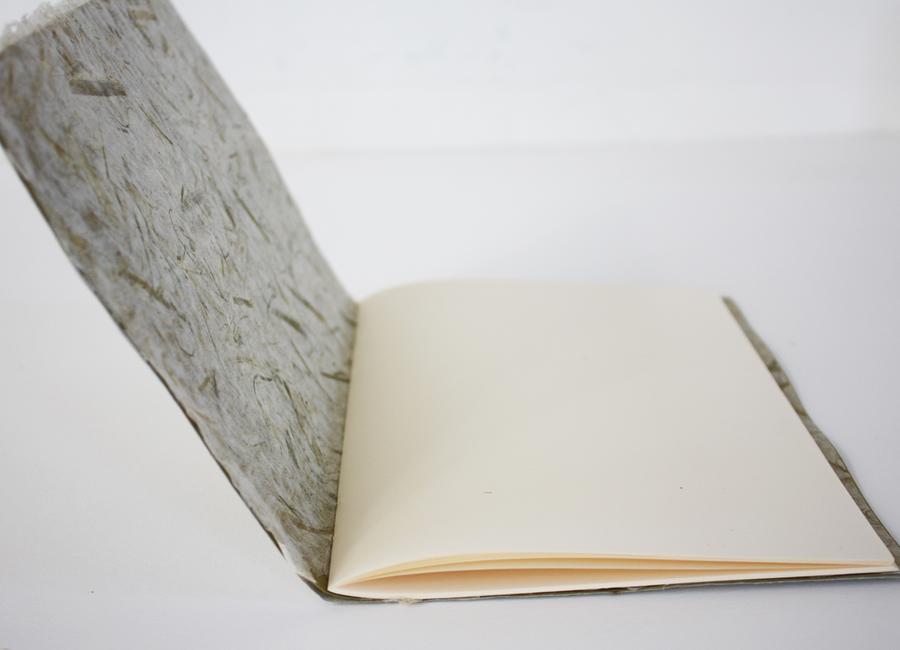 weekly_book_2_C.jpg