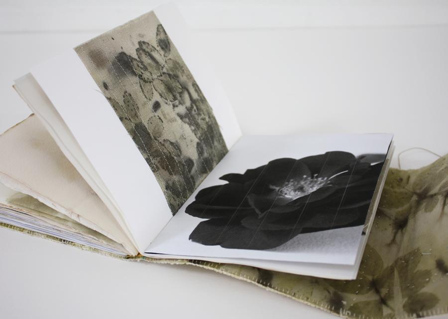 book_3_4_M.jpg