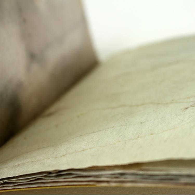 book_traces_II_5.jpg