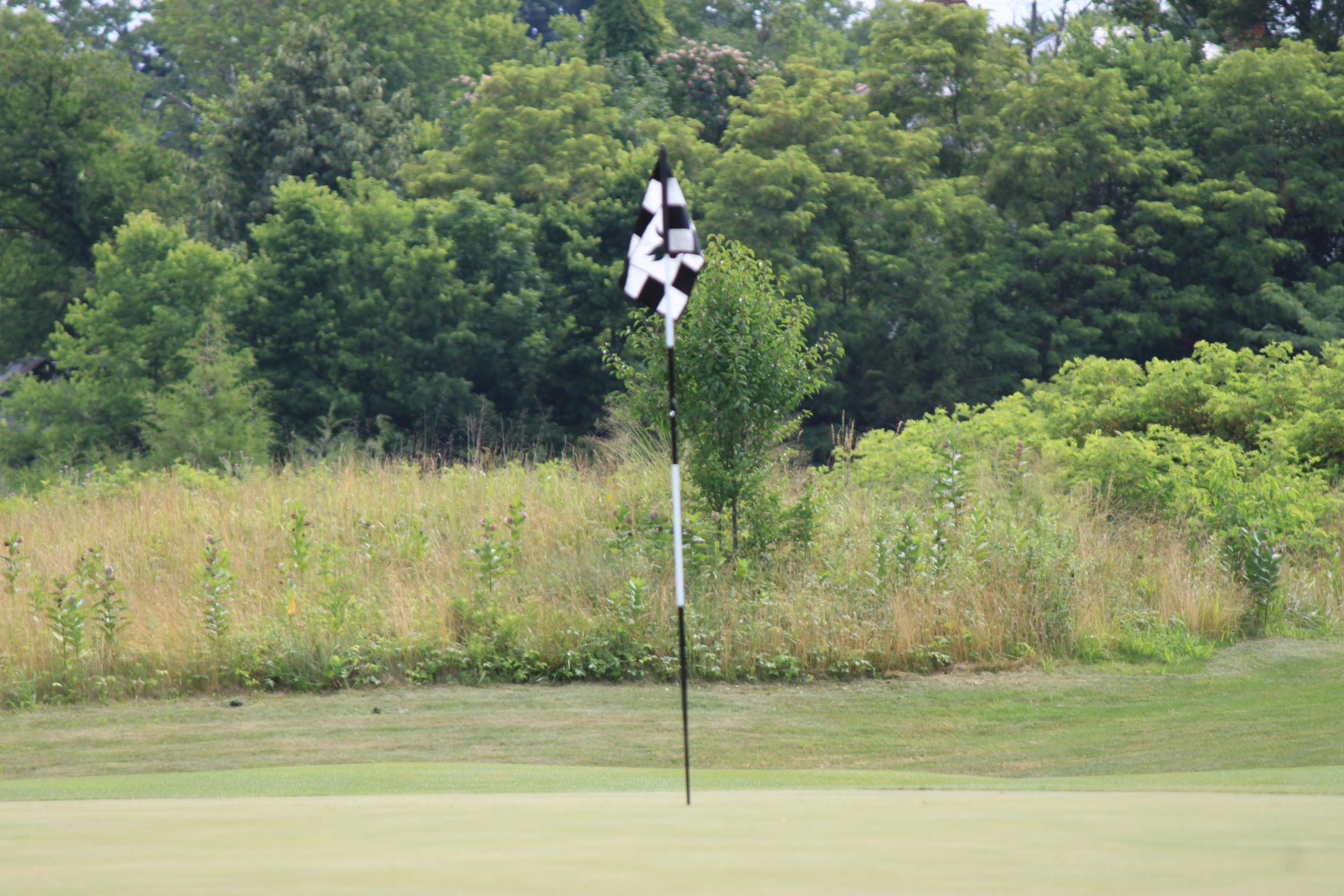 Dennis_Fitzgerald_Golf_Tournament_2011_IMG_3451.JPG