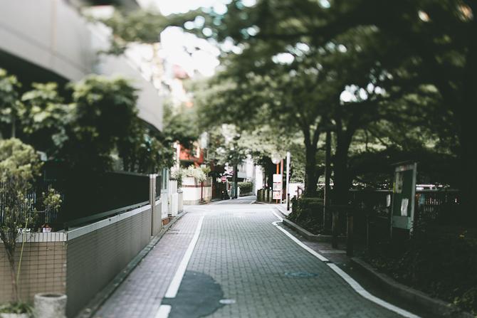 IMG_3649.jpg