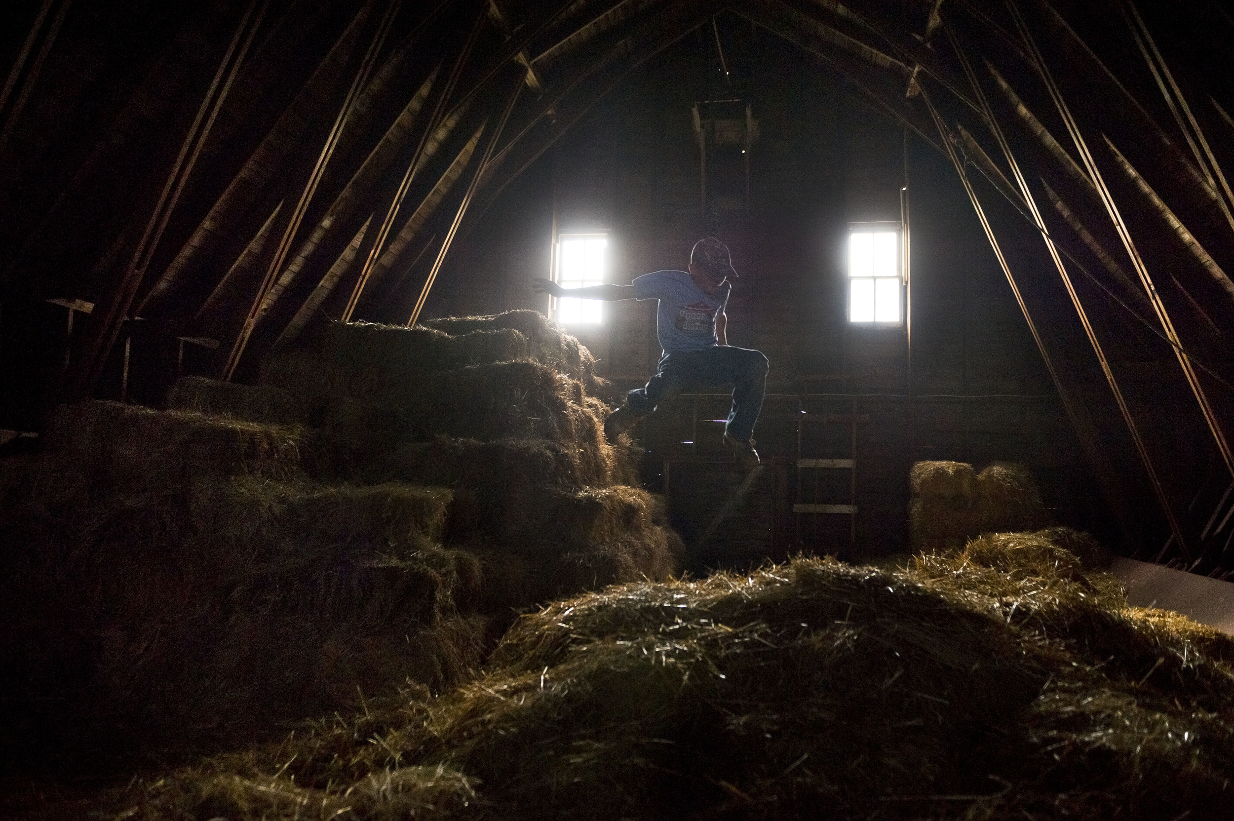 Ben in the hay, near Washburn, ND.