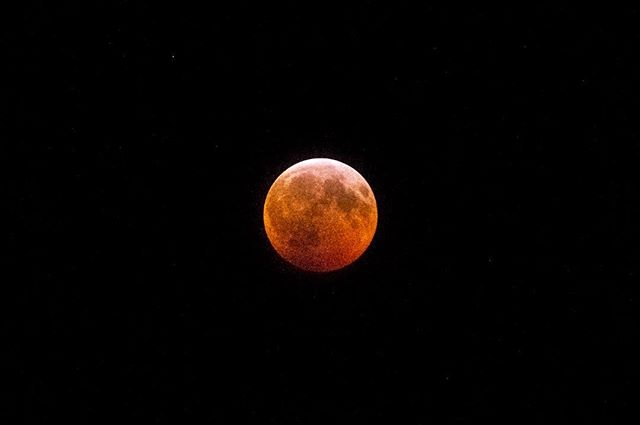 """Tonight, there's a reddish moon"" -27° windchill  #superbloodwolfmoon #astrophotography #totallunareclipse #vermont #nikon"