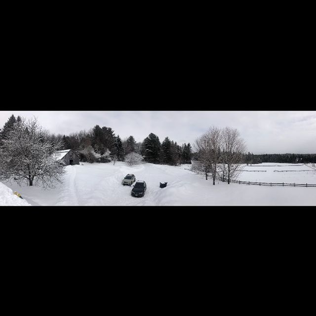 There's a lot of snow here  #vermont #vermontwinter #winter #snow #deepsnow #viewfromtheroof #panorama #panoramic #iphone8