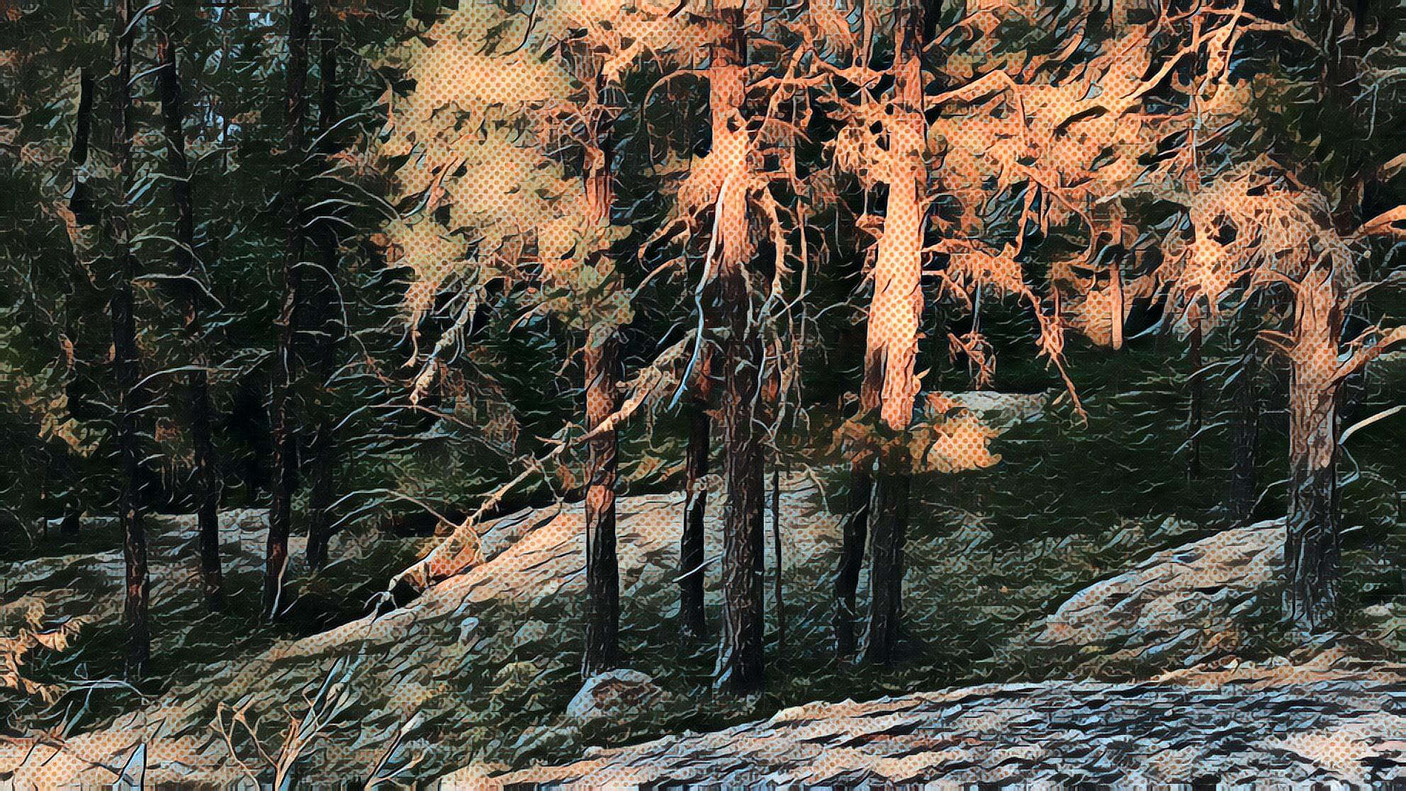 """Minaki Sunset"", Peter Graham, screenprint on paper, 18"" x 10"", edition of 10, 2018. $350"
