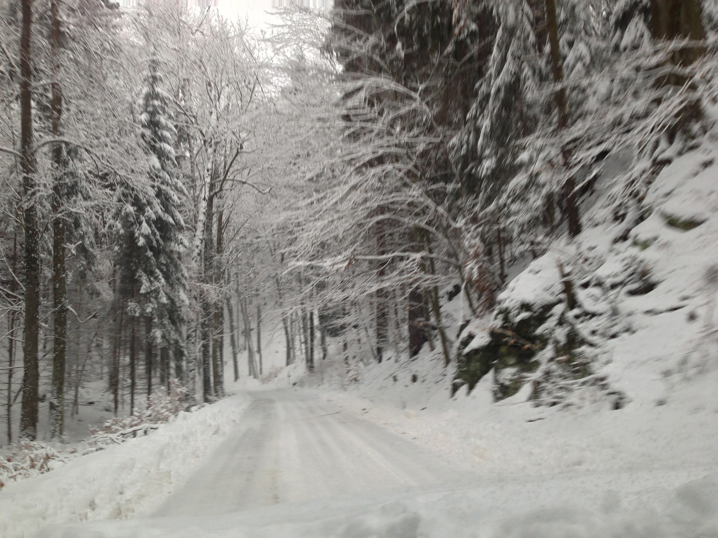 Momentky brezen - 119.jpg