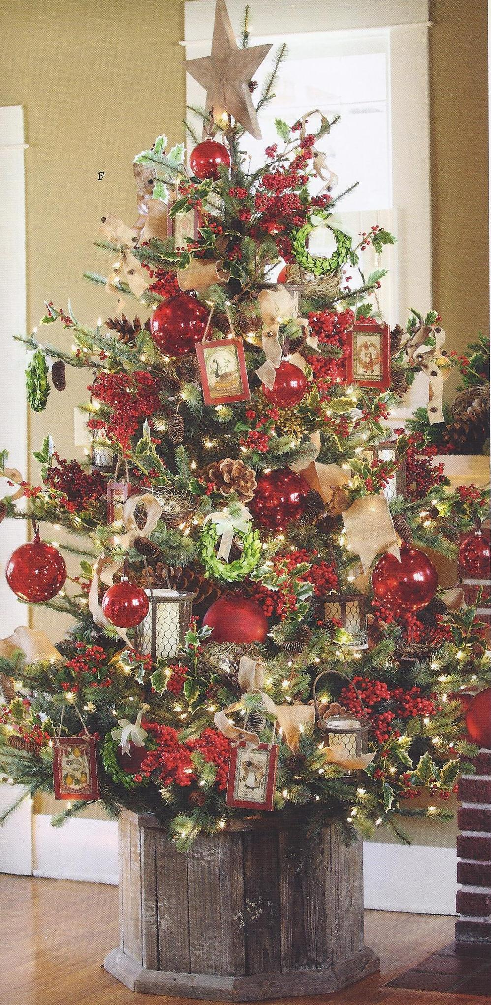 christmas.tree.providence.ltd.design.jpg