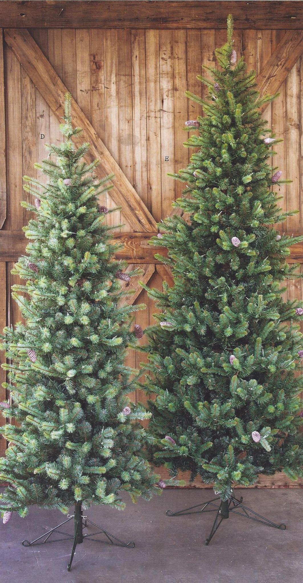 Christmas.trees.undecorated.providence.ltd.design.jpg