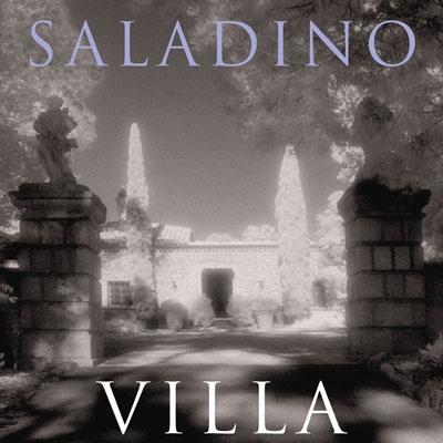 Books-Saladino-Decorating.jpg