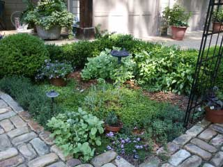 10063937-herb-garden-design-makes-your-garden-beautiful-and-bountiful.jpg