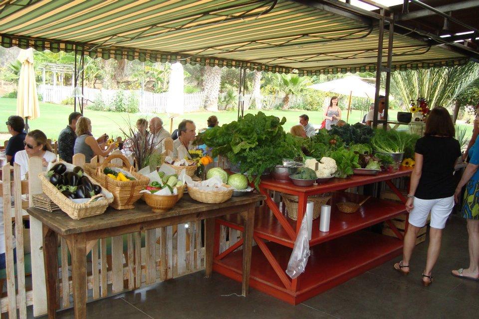patio-flora-farms.jpg