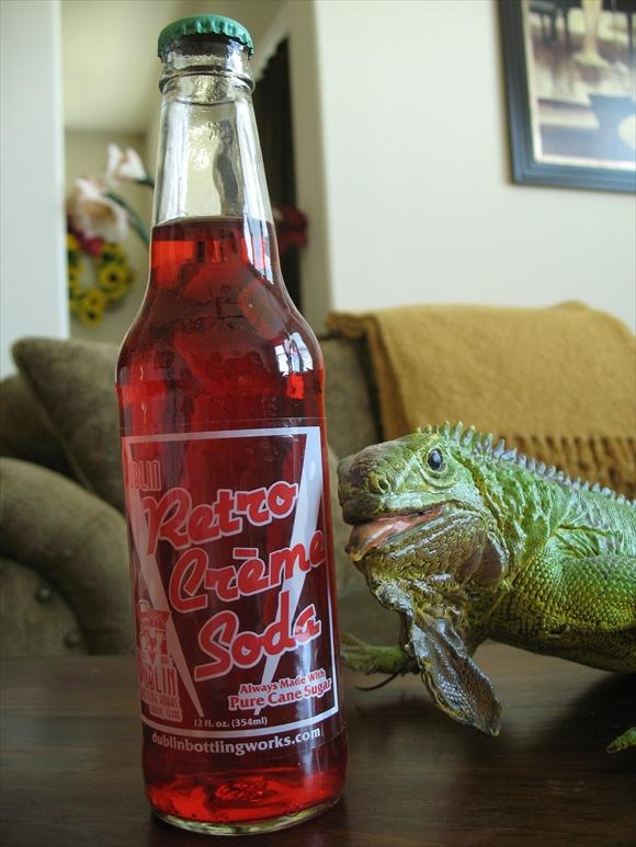 Retro Creme Soda580.JPG