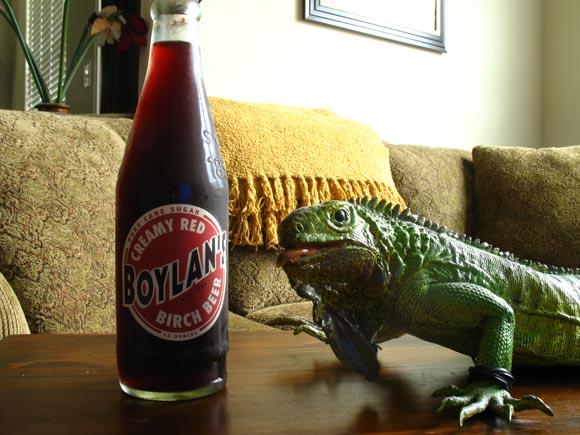 Boylan's Creamy Red Birch Beer580.jpg
