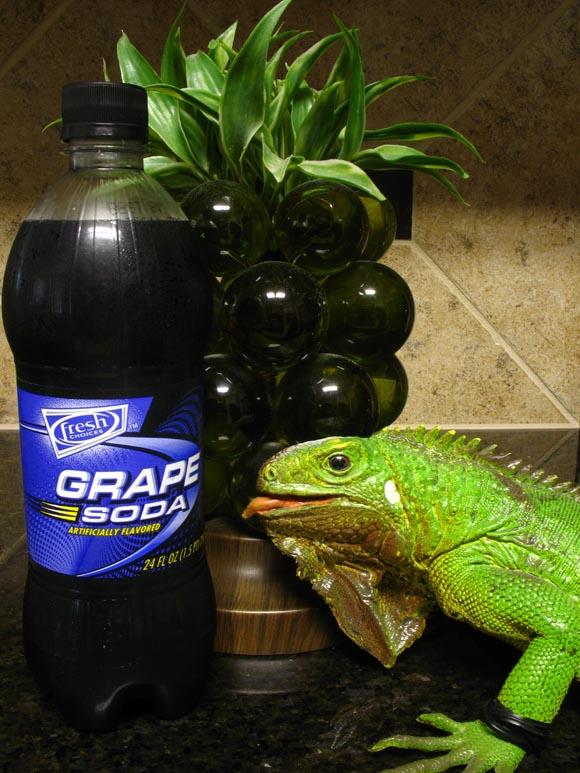Fresh Choices Grape Soda580.jpg