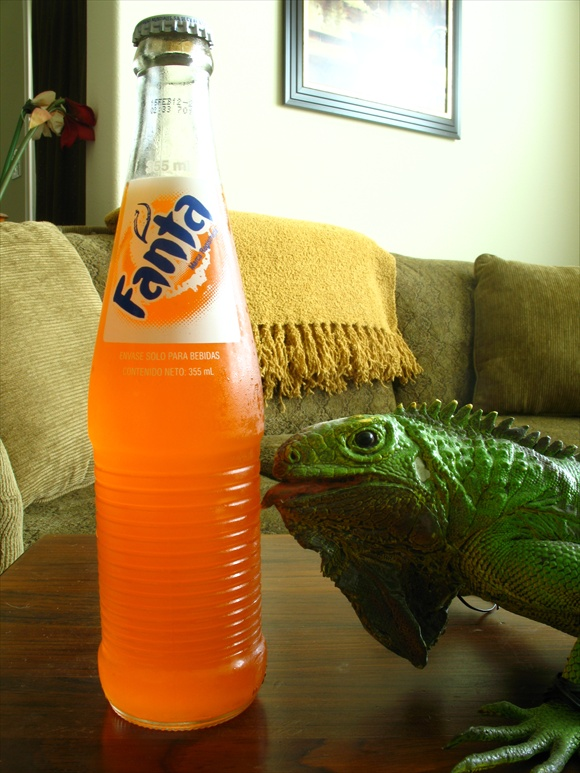 Fanta Orange with Sugar580.jpg
