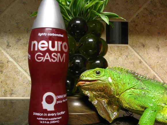 Neurogasm580.jpg