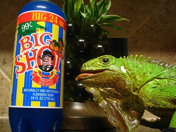 Big Shot Pineapple Blue Bayou580.jpg