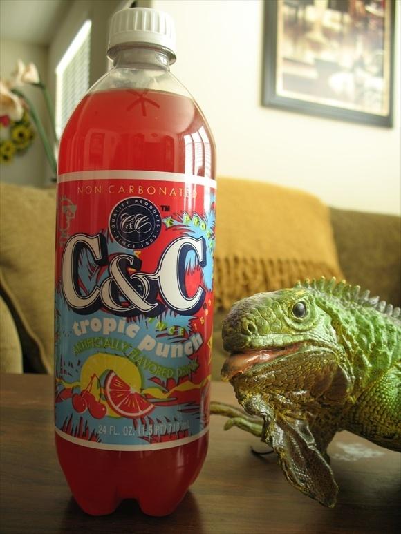 C&C Tropic Punch580.jpg