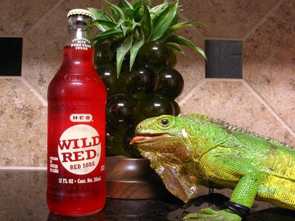 HEB Wild Red Soda580.jpg