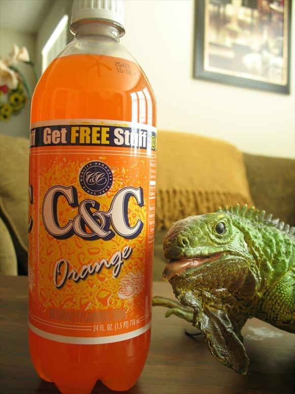 C&C Orange580.jpg