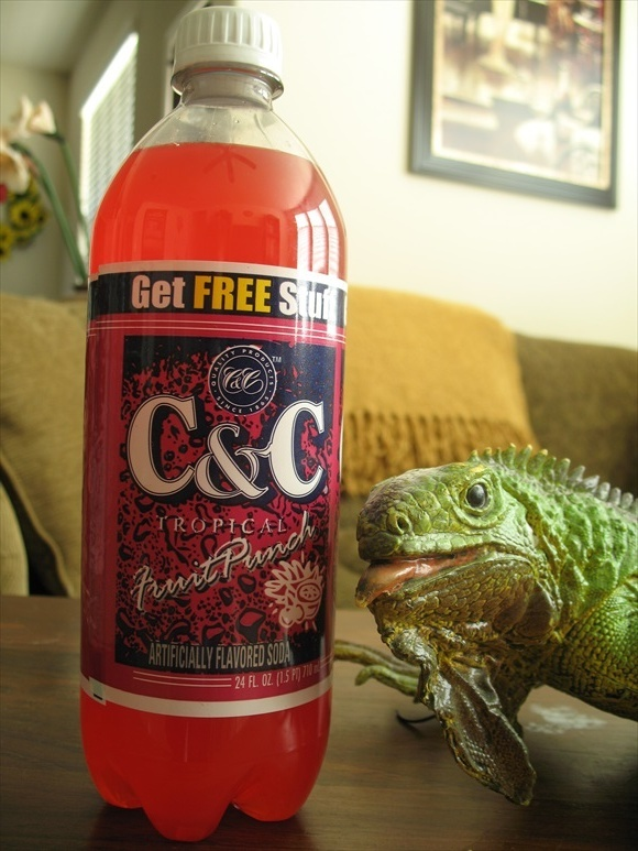 C&C Tropical Fruit Punch580.jpg