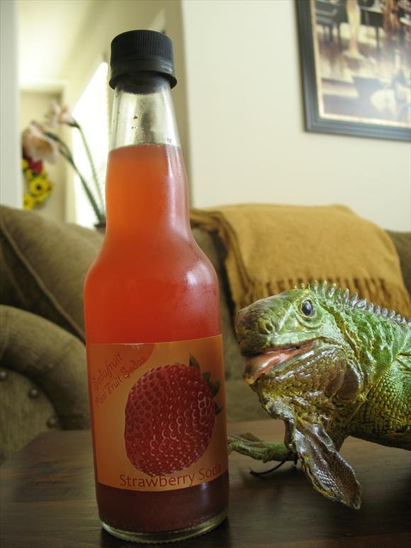 Sodafruit Strawberry580.JPG