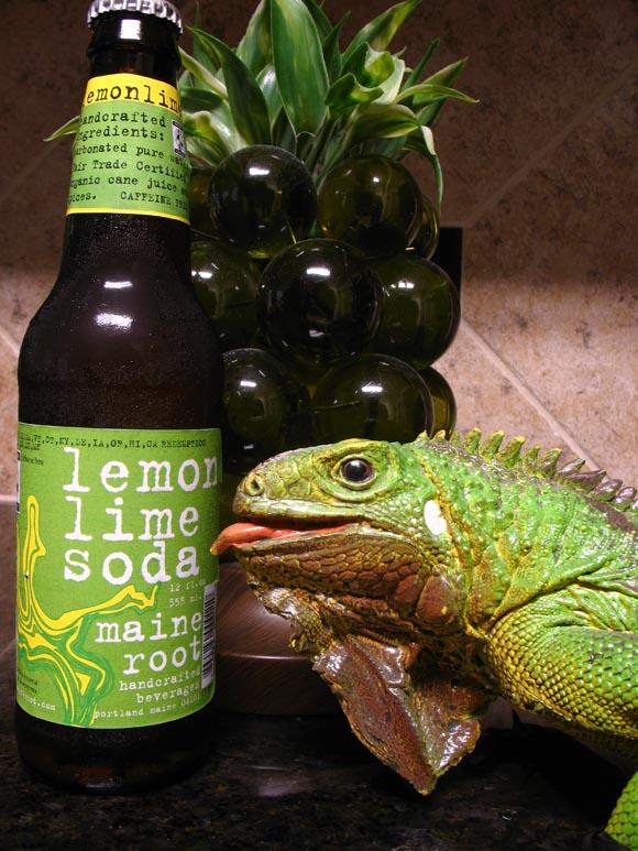 Maine Root Lemon Lime Soda580.jpg