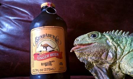 Bundaberg Aus Ginger Beer.jpg
