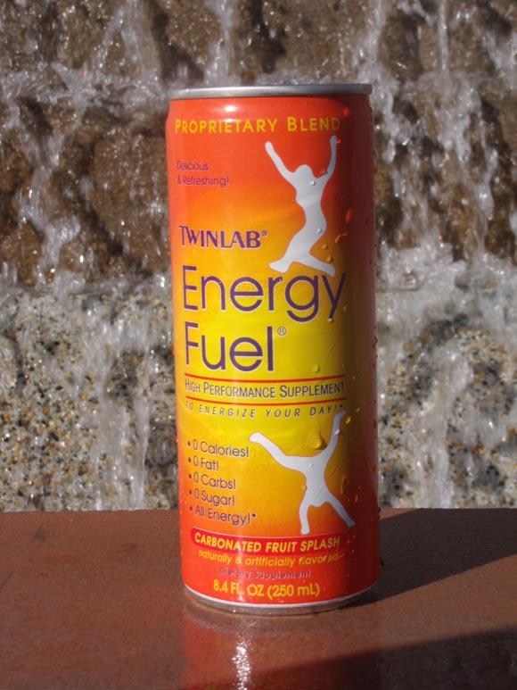 Twin Labs Energy Fuel580.jpg