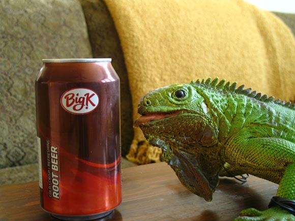 Big K Root Beer580.jpg