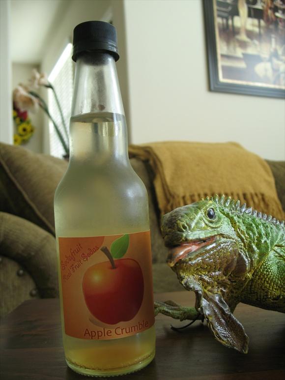 Sodafruit Apple Crumble580.JPG