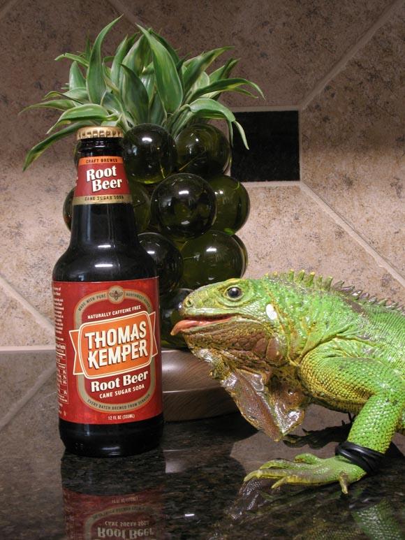 Thomas Kemper Root Beer580.jpg