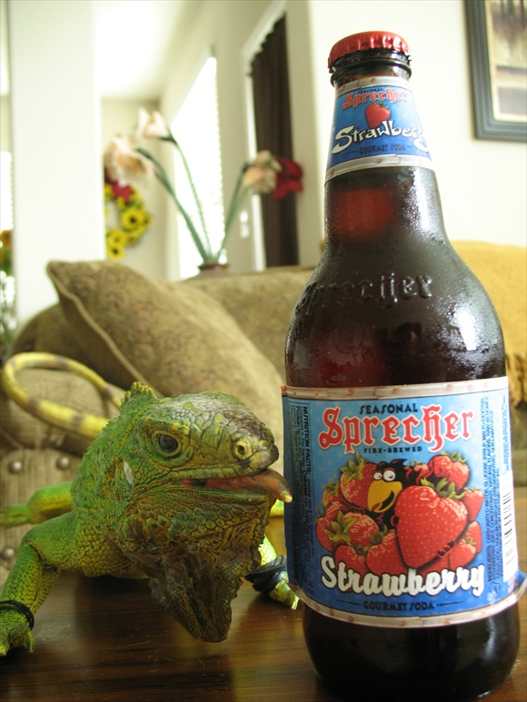 Sprecher Strawberry580.JPG
