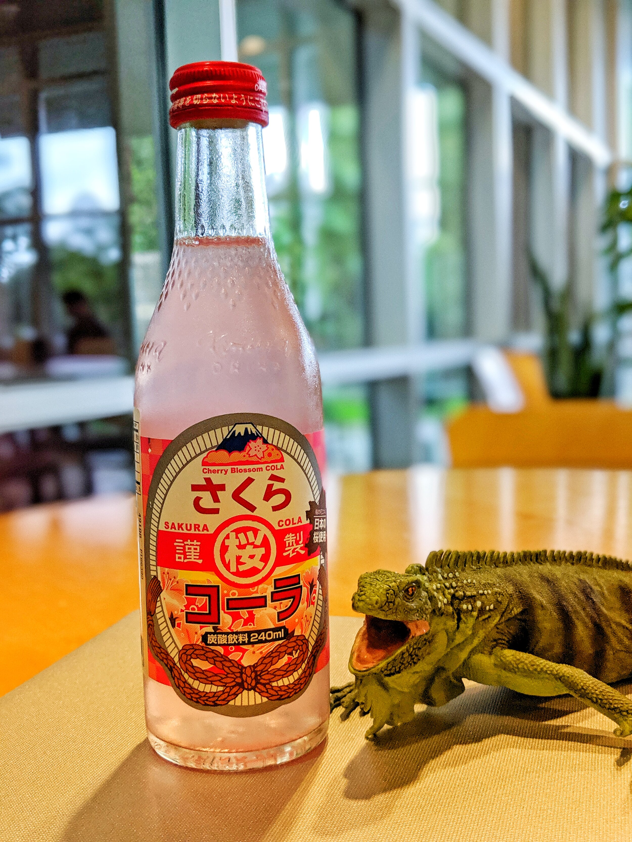 Iguana in Japanese is イグアナ