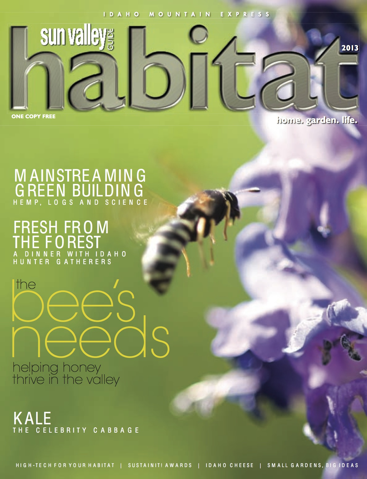 Paulette Phlipot's  stunning image of a honey bee (yes, IT IS a honey bee... not a hornet), graces the cover of my last issue, published today.